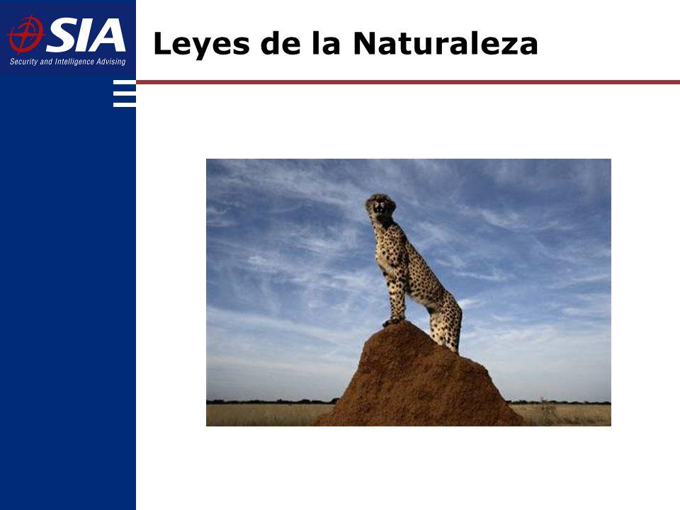 Leyes de la Naturaleza