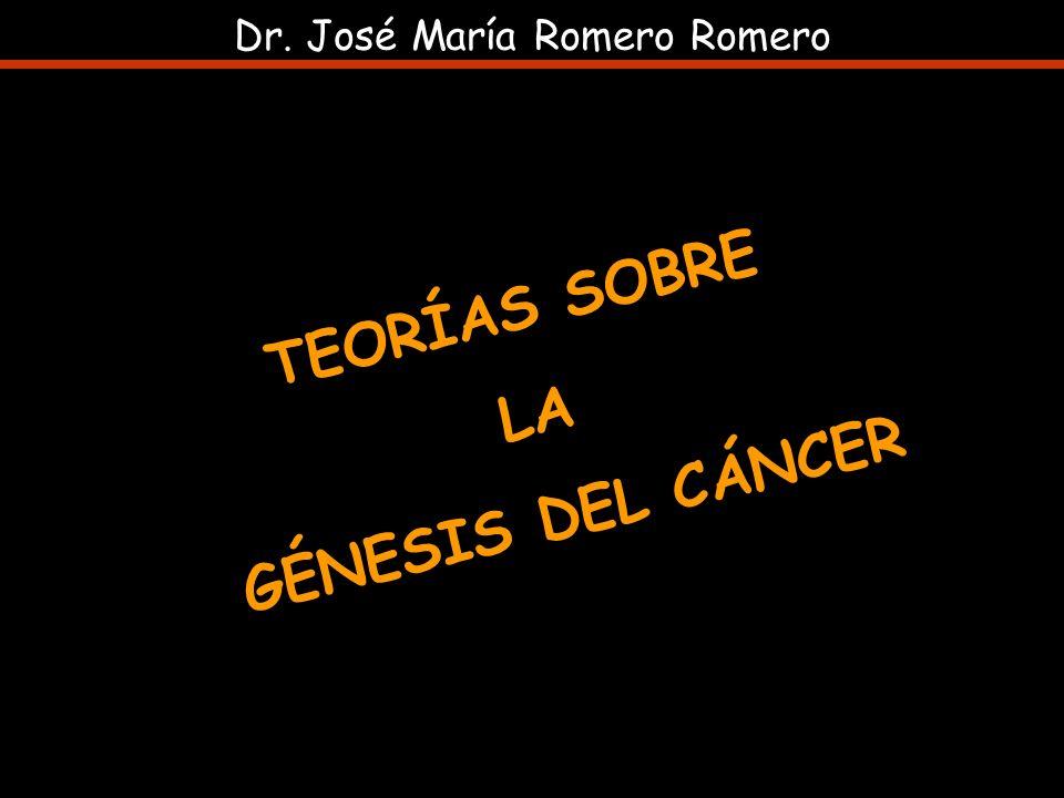 TEORÍAS SOBRE LA GÉNESIS DEL CÁNCER Dr. José María Romero Romero