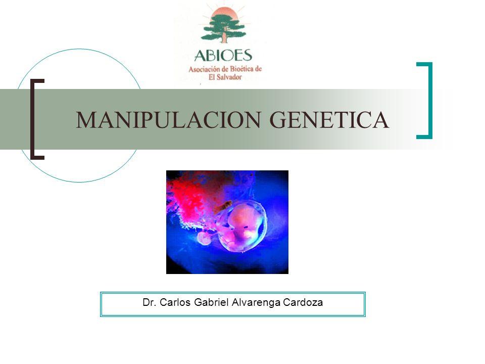 MANIPULACION GENETICA Dr. Carlos Gabriel Alvarenga Cardoza