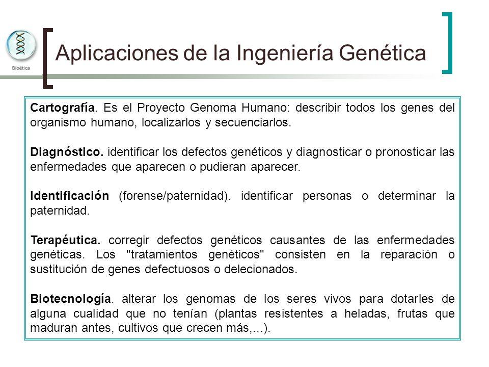 Aplicaciones de la Ingeniería Genética Cartografía. Es el Proyecto Genoma Humano: describir todos los genes del organismo humano, localizarlos y secue