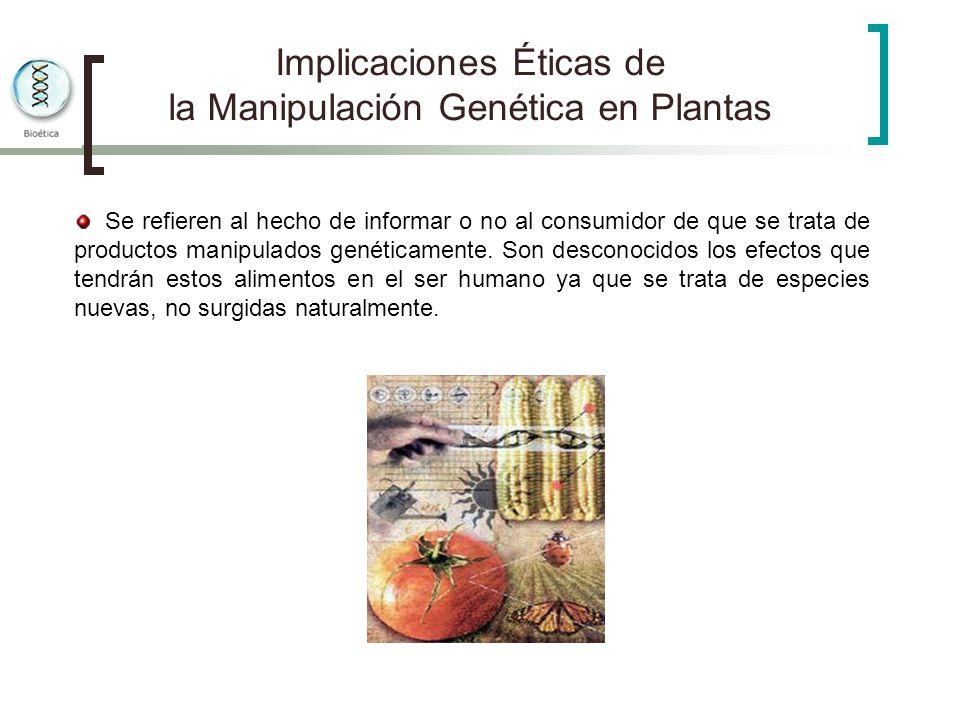 Implicaciones Éticas de la Manipulación Genética en Plantas Se refieren al hecho de informar o no al consumidor de que se trata de productos manipulad