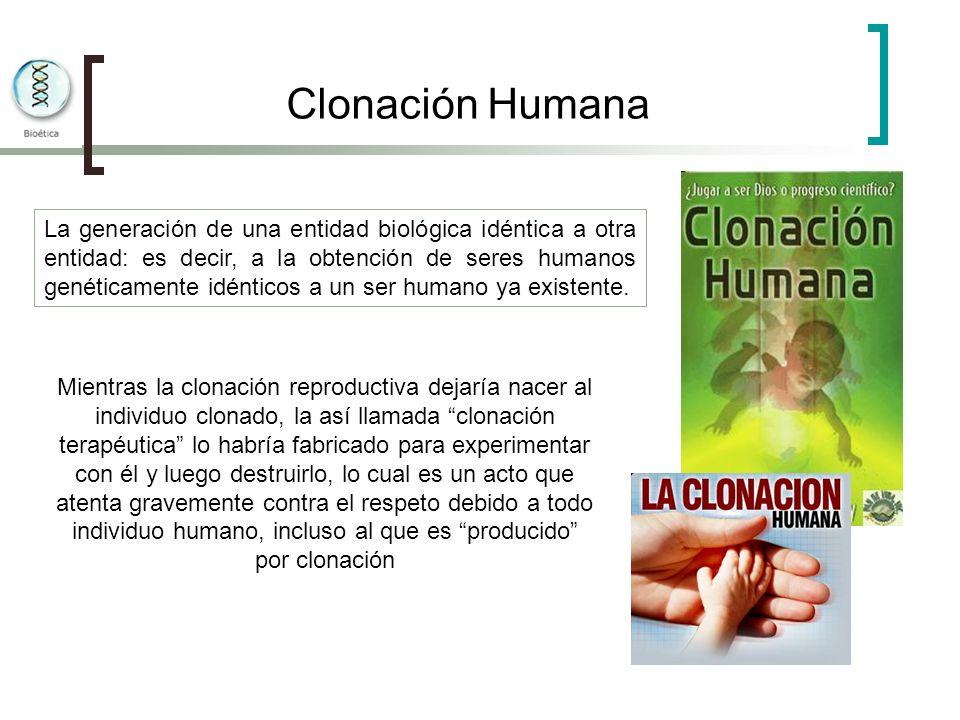 Clonación Humana La generación de una entidad biológica idéntica a otra entidad: es decir, a la obtención de seres humanos genéticamente idénticos a u