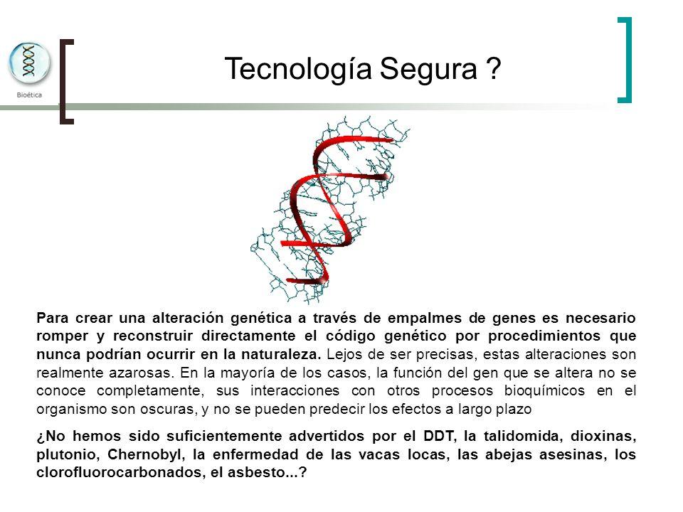 Tecnología Segura ? Para crear una alteración genética a través de empalmes de genes es necesario romper y reconstruir directamente el código genético