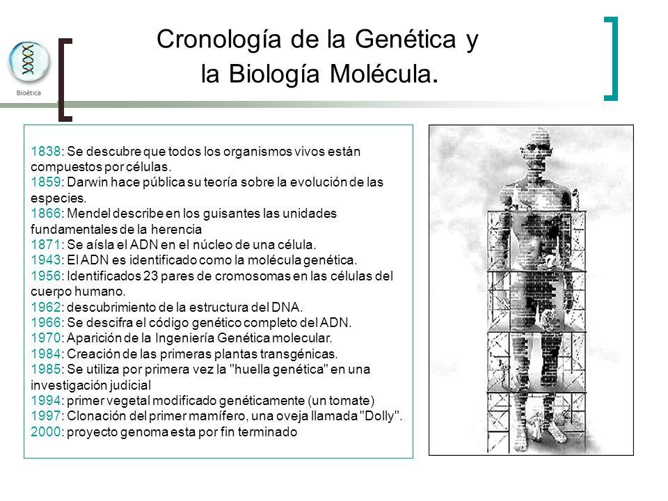 Cronología de la Genética y la Biología Molécula. 1838: Se descubre que todos los organismos vivos están compuestos por células. 1859: Darwin hace púb
