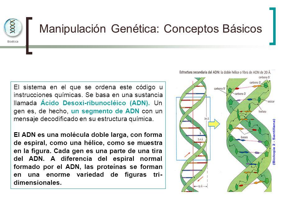 Manipulación Genética: Conceptos Básicos El sistema en el que se ordena este código u instrucciones químicas. Se basa en una sustancia llamada Ácido D
