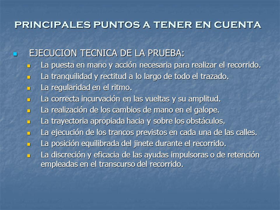 principales puntos a tener en cuenta EJECUCION TECNICA DE LA PRUEBA: EJECUCION TECNICA DE LA PRUEBA: La puesta en mano y acción necesaria para realizar el recorrido.