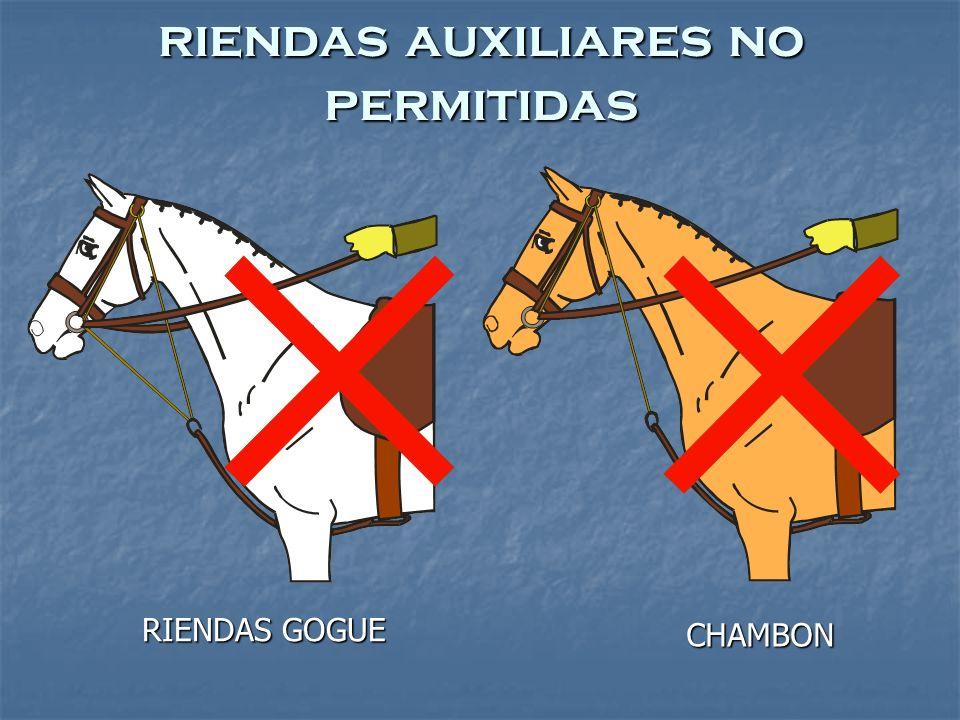 RIENDAS GOGUE CHAMBON riendas auxiliares no permitidas