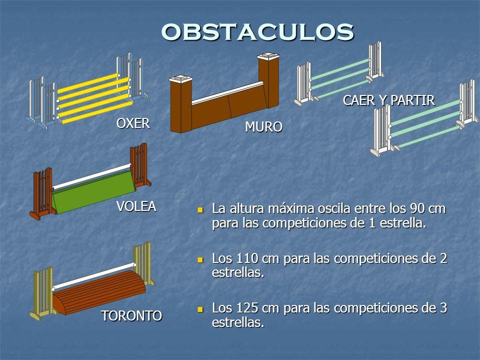 OXER MURO VOLEA TORONTO CAER Y PARTIR La altura máxima oscila entre los 90 cm para las competiciones de 1 estrella.