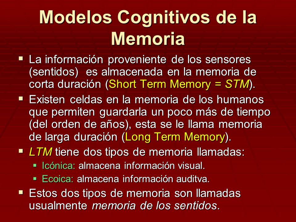 Modelos Cognitivos de la Memoria La información proveniente de los sensores (sentidos) es almacenada en la memoria de corta duración (Short Term Memor