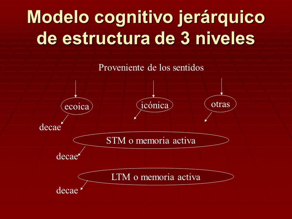 Modelo cognitivo jerárquico de estructura de 3 niveles ecoica icónica otras Proveniente de los sentidos STM o memoria activa LTM o memoria activa deca