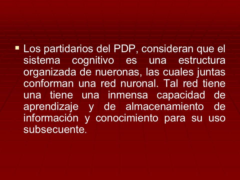Los partidarios del PDP, consideran que el sistema cognitivo es una estructura organizada de nueronas, las cuales juntas conforman una red nuronal. Ta