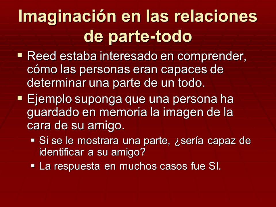 Imaginación en las relaciones de parte-todo Reed estaba interesado en comprender, cómo las personas eran capaces de determinar una parte de un todo. R