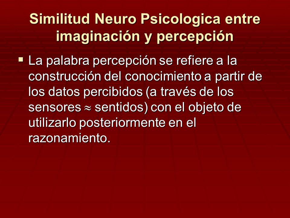 Similitud Neuro Psicologica entre imaginación y percepción La palabra percepción se refiere a la construcción del conocimiento a partir de los datos p
