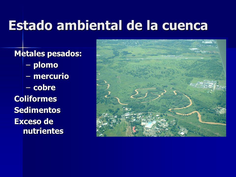Estado ambiental de la cuenca Metales pesados: –plomo –mercurio –cobre ColiformesSedimentos Exceso de nutrientes