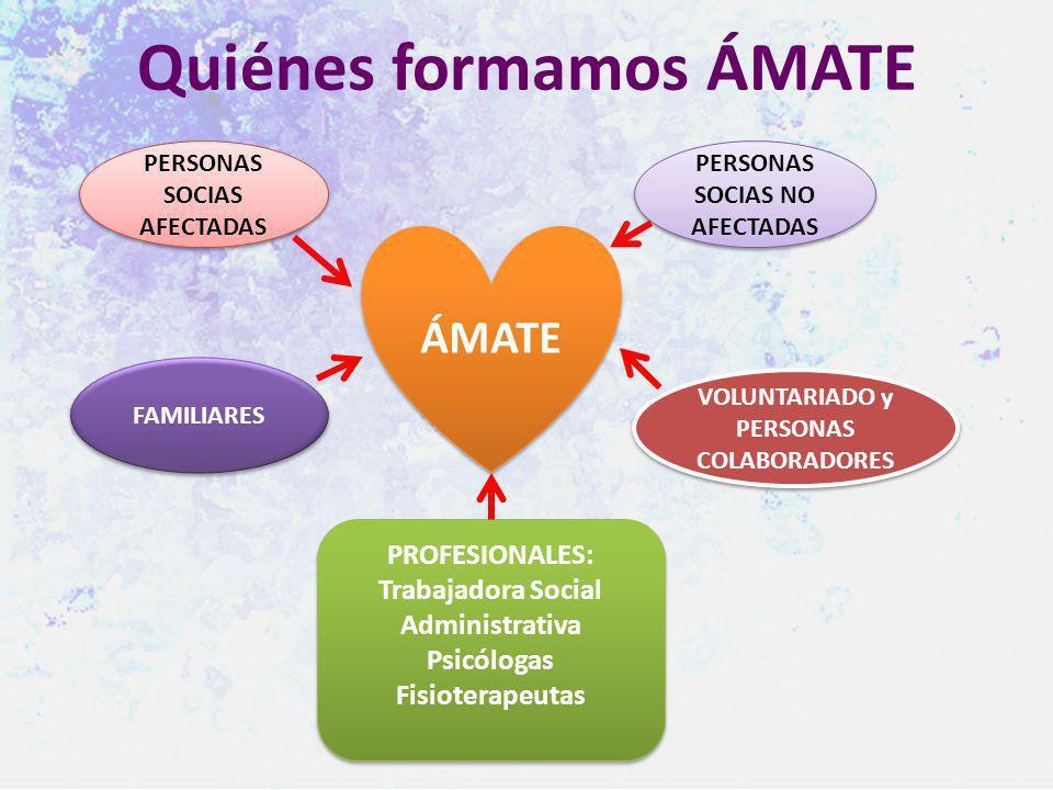 Quiénes formamos ÁMATE PERSONAS SOCIAS AFECTADAS PERSONAS SOCIAS NO AFECTADAS FAMILIARES VOLUNTARIADO y PERSONAS COLABORADORES ÁMATE PROFESIONALES: Tr
