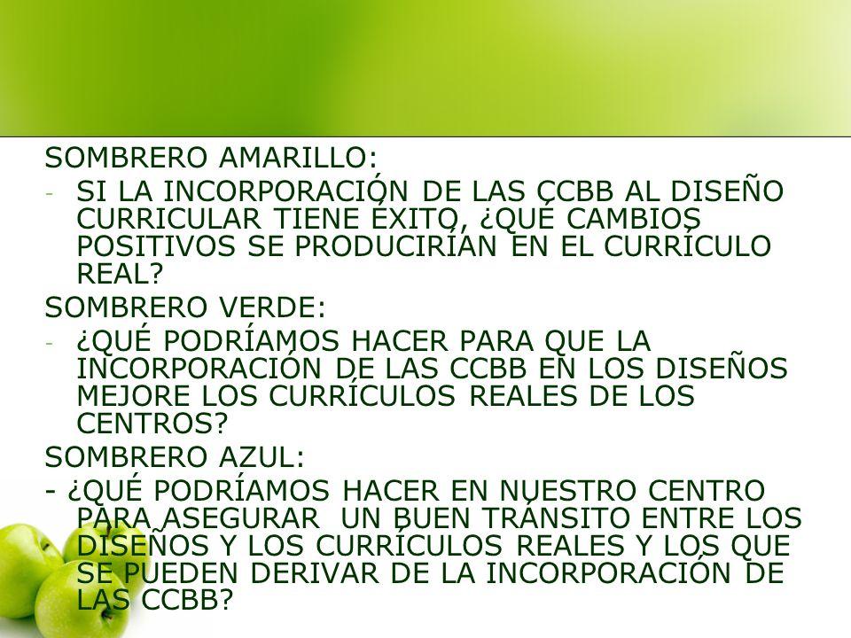 SOMBRERO AMARILLO: - SI LA INCORPORACIÓN DE LAS CCBB AL DISEÑO CURRICULAR TIENE ÉXITO, ¿QUÉ CAMBIOS POSITIVOS SE PRODUCIRÍAN EN EL CURRÍCULO REAL.