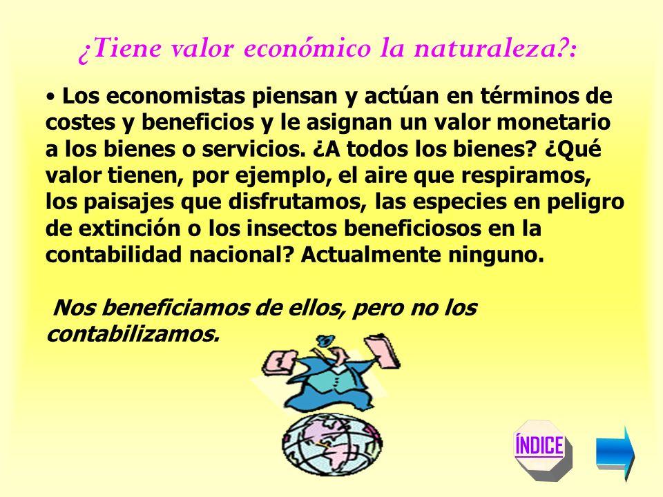 Los economistas piensan y actúan en términos de costes y beneficios y le asignan un valor monetario a los bienes o servicios.