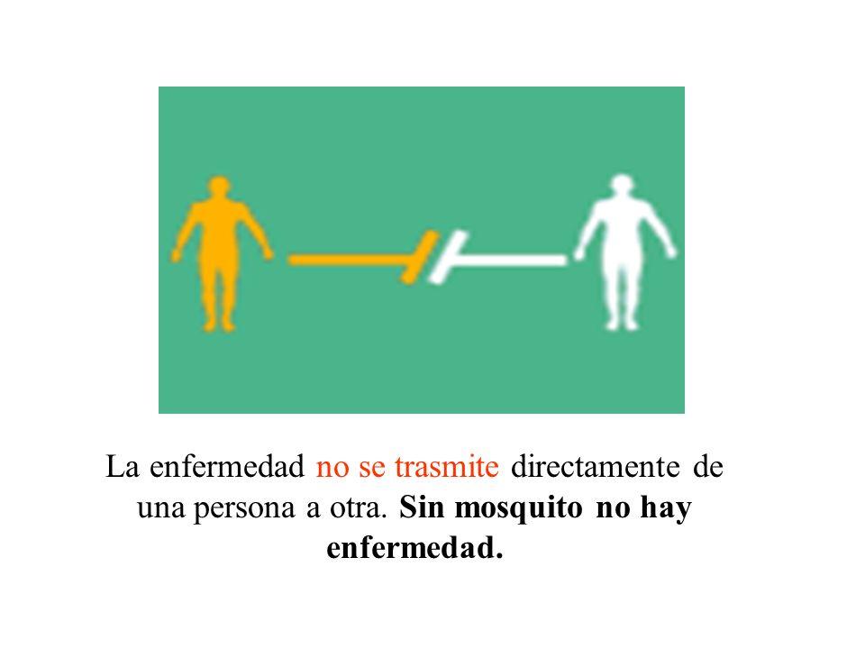 La enfermedad no se trasmite directamente de una persona a otra. Sin mosquito no hay enfermedad.