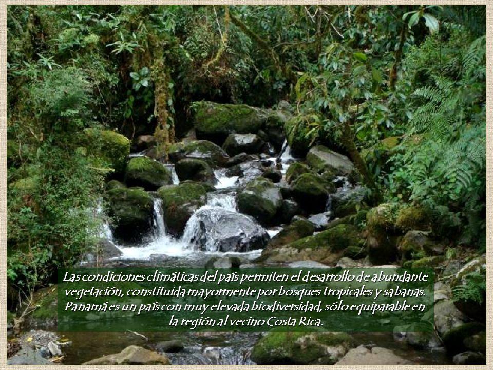 Las condiciones climáticas del país permiten el desarrollo de abundante vegetación, constituida mayormente por bosques tropicales y sabanas.