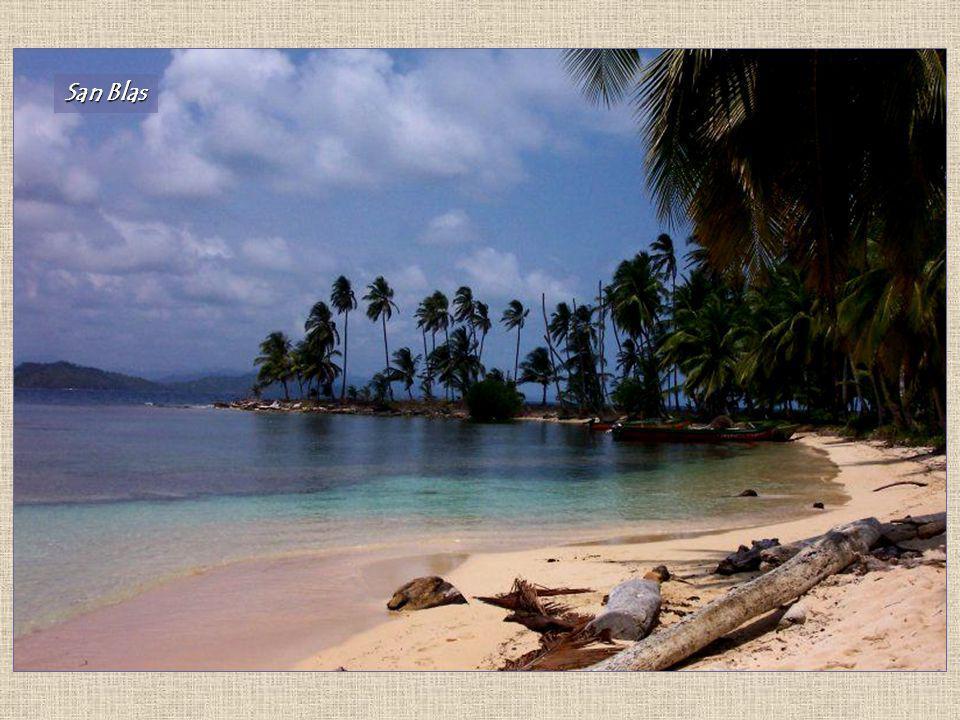 Las condiciones climáticas del país permiten el desarrollo de abundante vegetación, constituida mayormente por bosques tropicales y sabanas. Panamá es