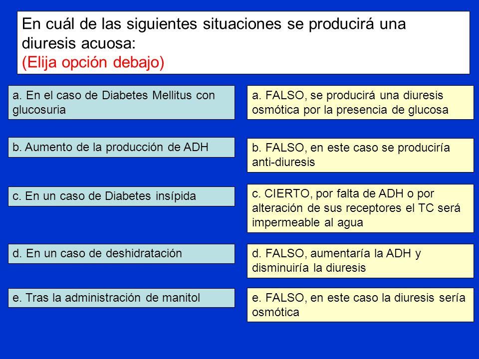 a. En el caso de Diabetes Mellitus con glucosuria b. Aumento de la producción de ADH c. En un caso de Diabetes insípida d. En un caso de deshidratació