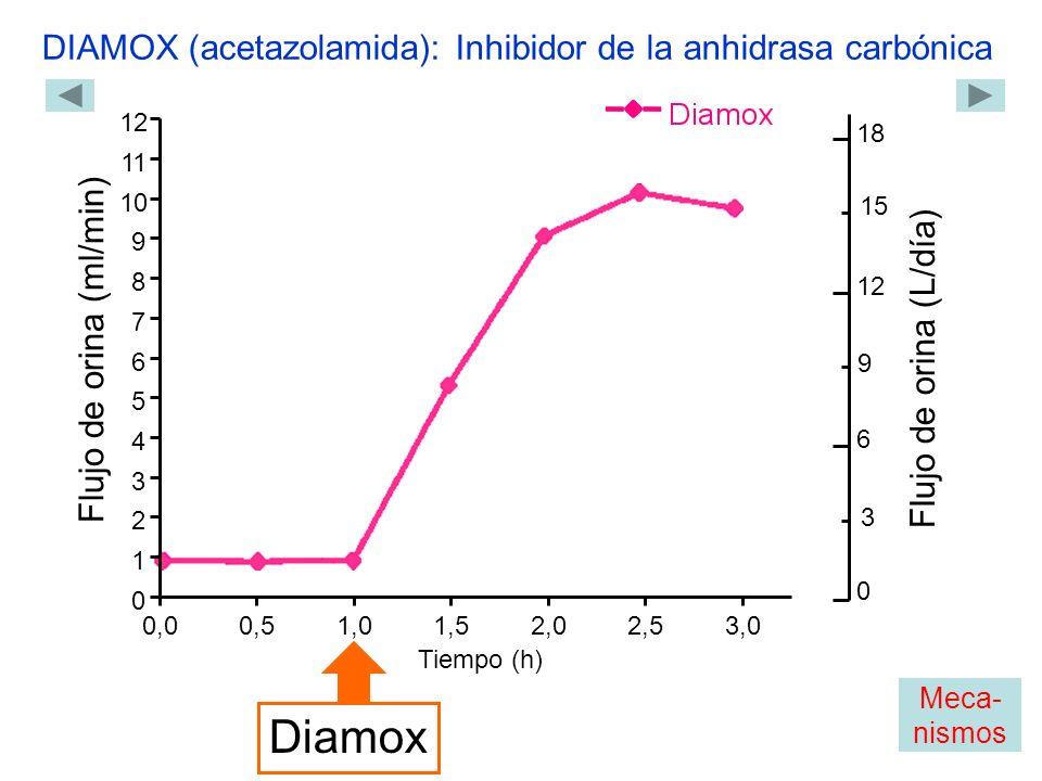 0,00,51,01,5 2,02,53,0 0 1 2 3 4 5 6 7 8 9 10 11 12 Flujo de orina (ml/min) Tiempo (h) Diamox DIAMOX (acetazolamida): Inhibidor de la anhidrasa carbónica 0 18 12 6 Flujo de orina (L/día) 3 9 15 Meca- nismos