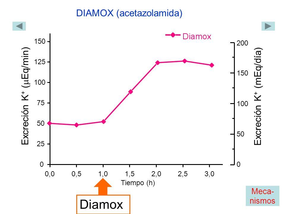 0,00,51,01,52,02,53,0 0 25 50 75 100 125 150 Excreción K + ( Eq/min) Tiempo (h) Diamox DIAMOX (acetazolamida) 0 200 150 100 50 Excreción K + (mEq/día) Meca- nismos