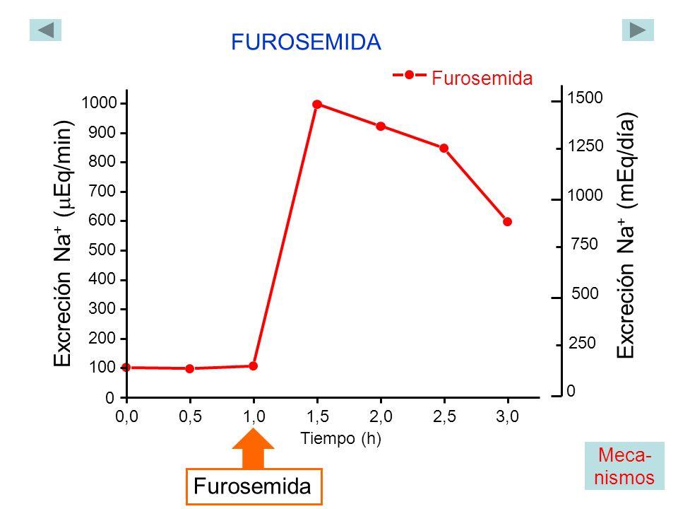 Furosemida 0,00,51,01,52,02,53,0 0 100 200 300 400 500 600 700 800 900 1000 Excreción Na + ( Eq/min) Tiempo (h) FUROSEMIDA Furosemida 1500 1000 Excrec