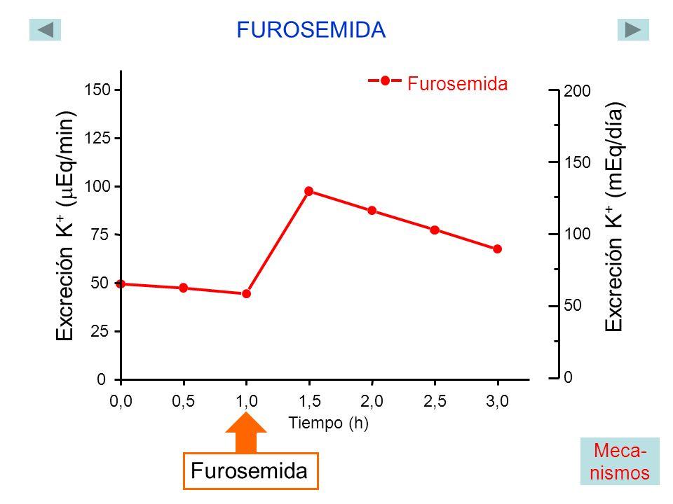Furosemida 0,00,51,01,52,02,53,0 0 25 50 75 100 125 150 Excreción K + ( Eq/min) Tiempo (h) FUROSEMIDA Furosemida 0 200 150 100 50 Excreción K + (mEq/día) Meca- nismos