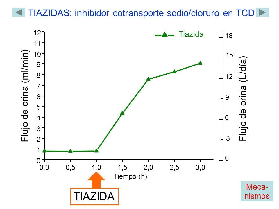 0,00,51,01,5 2,02,53,0 0 1 2 3 4 5 6 7 8 9 10 11 12 Flujo de orina (ml/min) Tiempo (h) TIAZIDA TIAZIDAS: inhibidor cotransporte sodio/cloruro en TCD Tiazida 0 18 12 6 Flujo de orina (L/día) 3 9 15 Meca- nismos