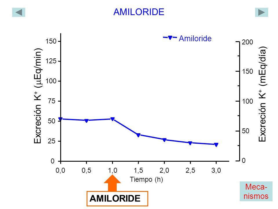 Amiloride 0,00,51,01,52,02,53,0 0 25 50 75 100 125 150 Excreción K + ( Eq/min) Tiempo (h) AMILORIDE 0 200 150 100 50 Excreción K + (mEq/día) Meca- nismos