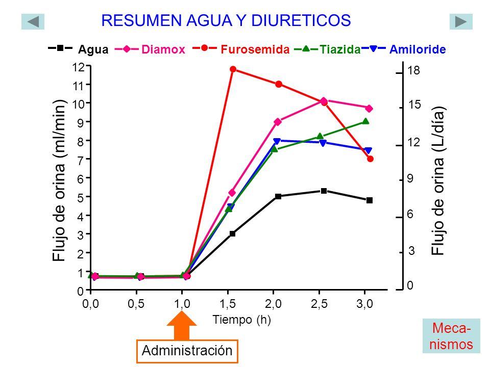 Agua Tiazida Furosemida Diamox Amiloride 0,00,51,01,5 2,02,53,0 0 1 2 3 4 5 6 7 8 9 10 11 12 Flujo de orina (ml/min) Tiempo (h) Administración RESUMEN AGUA Y DIURETICOS 0 18 12 6 Flujo de orina (L/día) 3 9 15 Meca- nismos