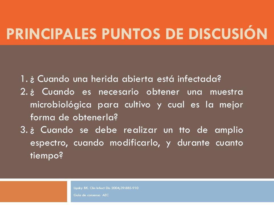PRINCIPALES PUNTOS DE DISCUSIÓN Lipsky BK.