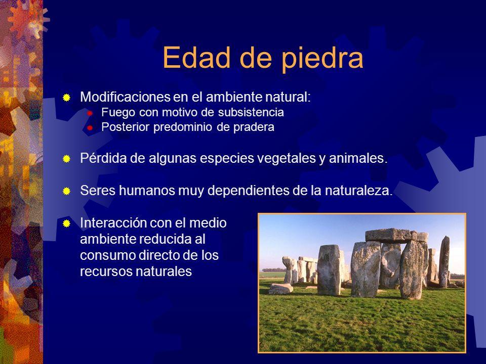 Edad de piedra Modificaciones en el ambiente natural: Fuego con motivo de subsistencia Posterior predominio de pradera Pérdida de algunas especies veg