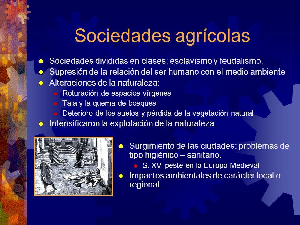 Sociedades agrícolas Sociedades divididas en clases: esclavismo y feudalismo. Supresión de la relación del ser humano con el medio ambiente Alteracion