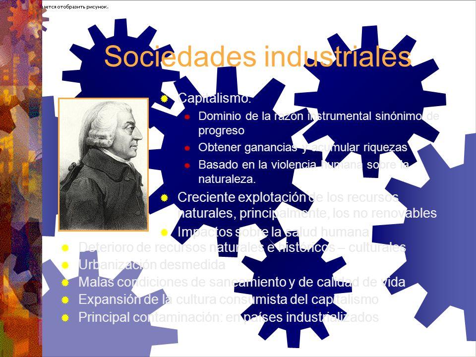 Sociedades industriales Capitalismo: Dominio de la razón instrumental sinónimo de progreso Obtener ganancias y acumular riquezas Basado en la violenci