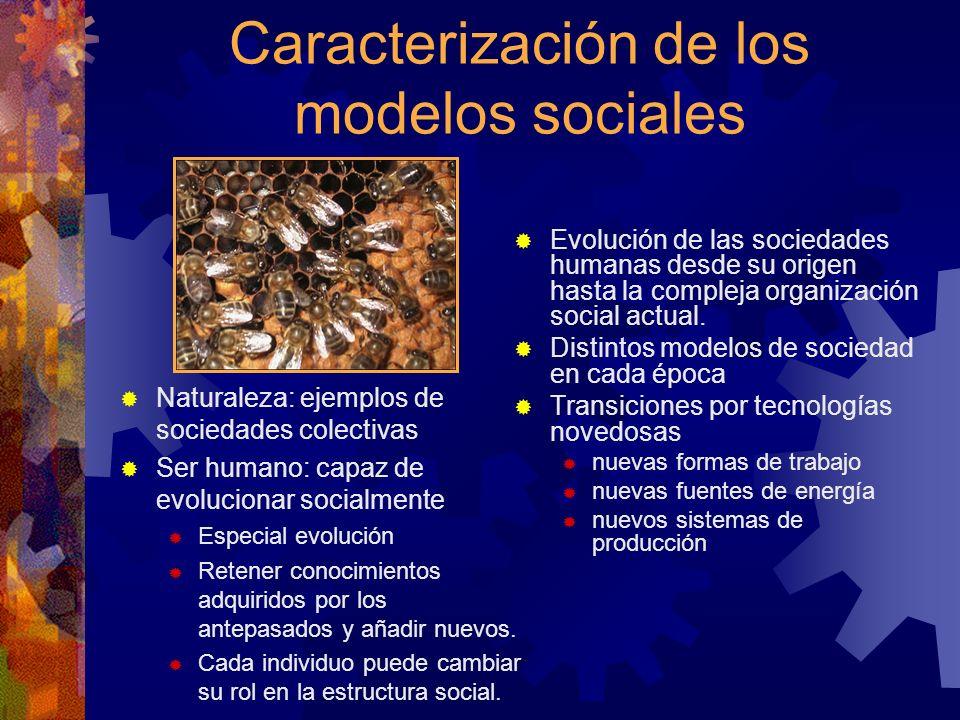 Caracterización de los modelos sociales Naturaleza: ejemplos de sociedades colectivas Ser humano: capaz de evolucionar socialmente Especial evolución