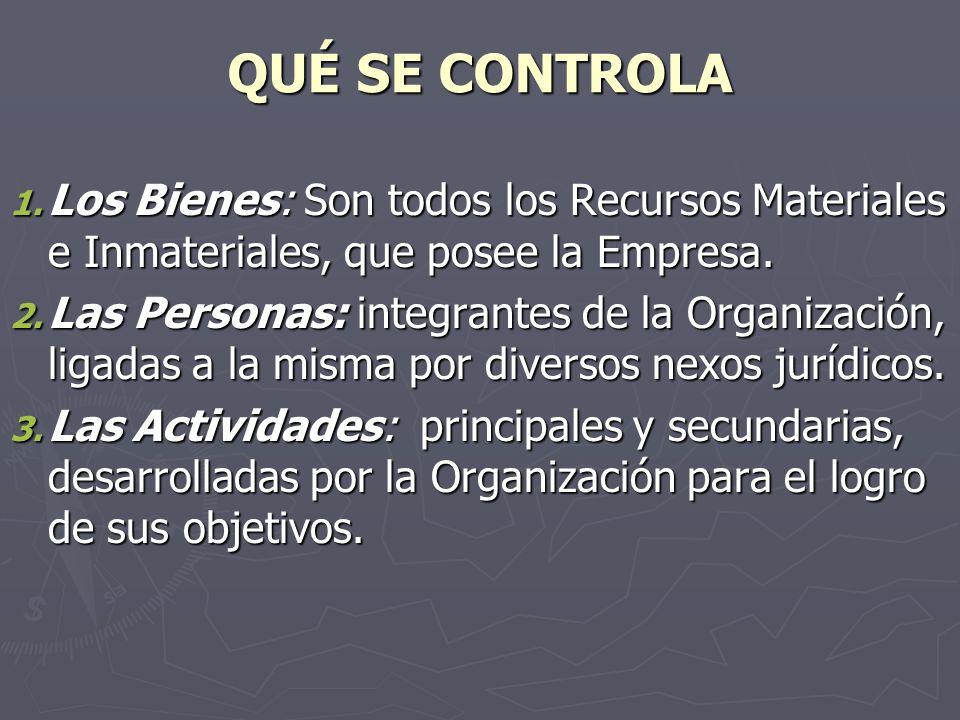 QUÉ SE CONTROLA 1. Los Bienes: Son todos los Recursos Materiales e Inmateriales, que posee la Empresa. 2. Las Personas: integrantes de la Organización