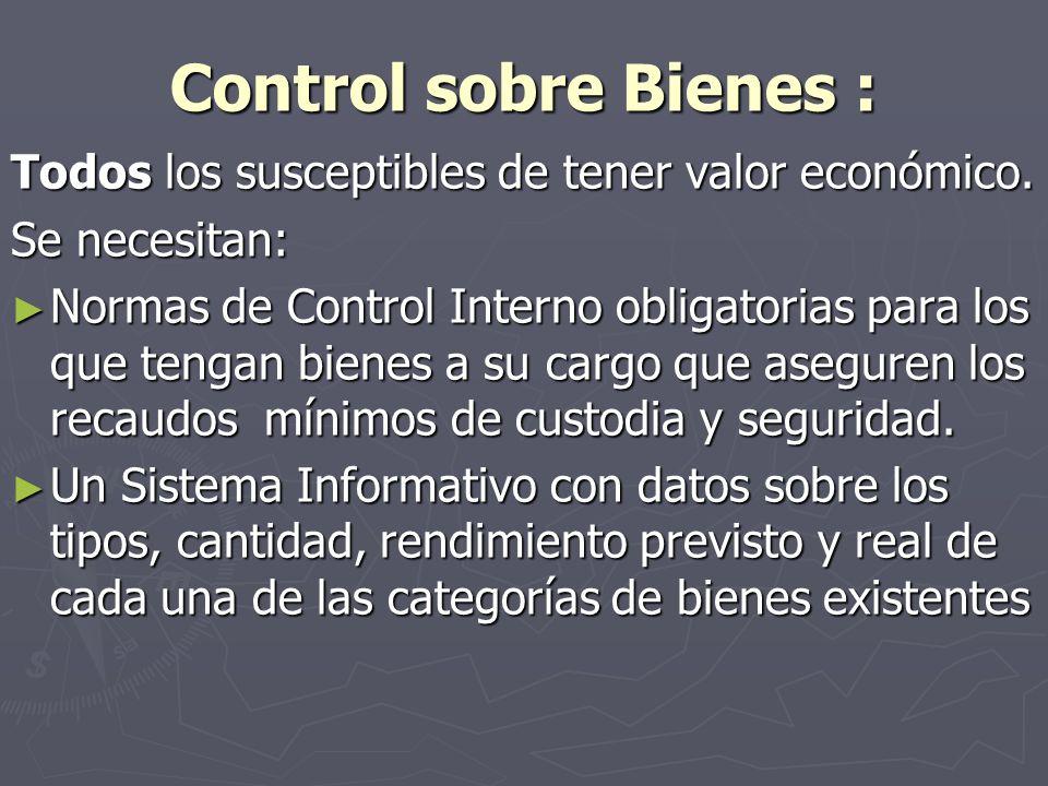 Control sobre Bienes : Todos los susceptibles de tener valor económico. Se necesitan: Normas de Control Interno obligatorias para los que tengan biene