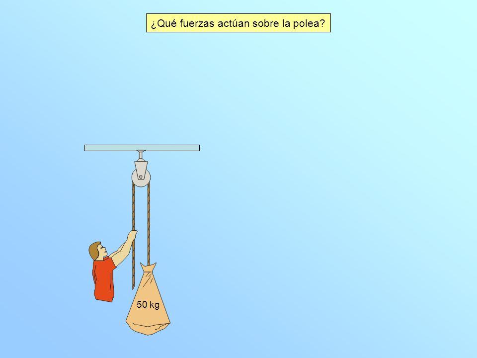 ¿Qué fuerzas actúan sobre la polea? 50 kg