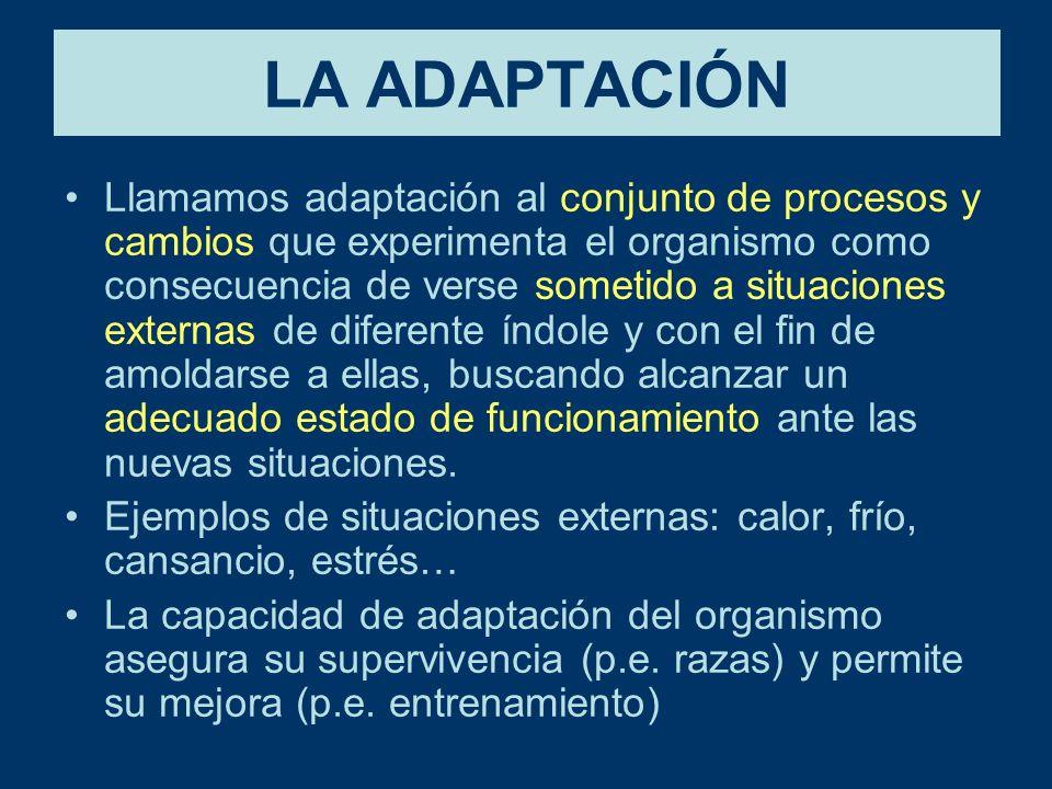 LA ADAPTACIÓN Llamamos adaptación al conjunto de procesos y cambios que experimenta el organismo como consecuencia de verse sometido a situaciones externas de diferente índole y con el fin de amoldarse a ellas, buscando alcanzar un adecuado estado de funcionamiento ante las nuevas situaciones.