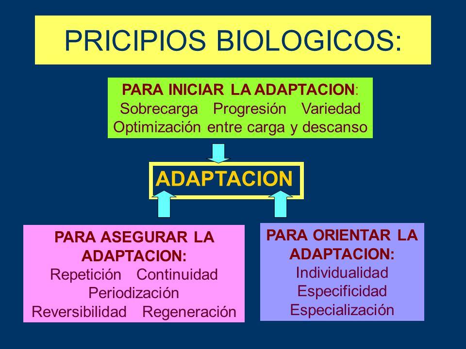 PRICIPIOS BIOLOGICOS: PARA INICIAR LA ADAPTACION: Sobrecarga Progresión Variedad Optimización entre carga y descanso ADAPTACION PARA ASEGURAR LA ADAPTACION: Repetición Continuidad Periodización Reversibilidad Regeneración PARA ORIENTAR LA ADAPTACION: Individualidad Especificidad Especialización
