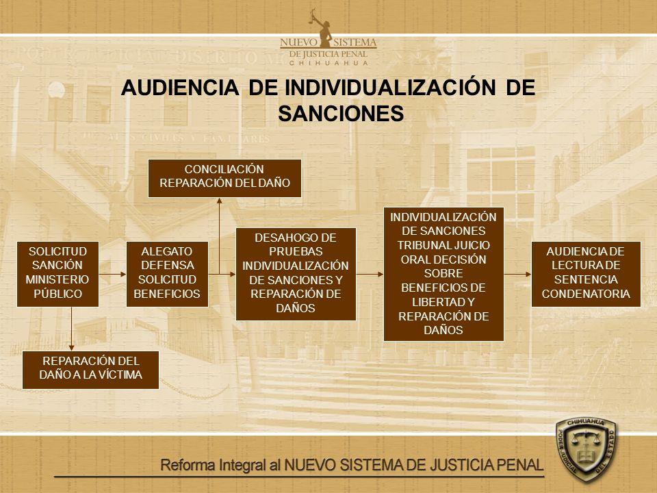 AUDIENCIA DE INDIVIDUALIZACIÓN DE SANCIONES SOLICITUD SANCIÓN MINISTERIO PÚBLICO ALEGATO DEFENSA SOLICITUD BENEFICIOS DESAHOGO DE PRUEBAS INDIVIDUALIZ