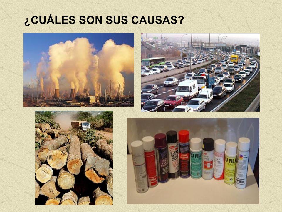 CÓMO ACTÚA El CO 2, el vapor de agua y otros gases en la atmósfera de nuestro planeta permiten pasar la radiación y el calor del sol (A) Parte de ese
