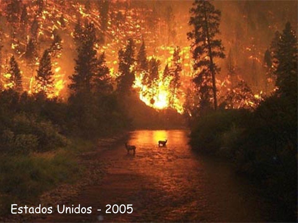 Estados Unidos - 2005