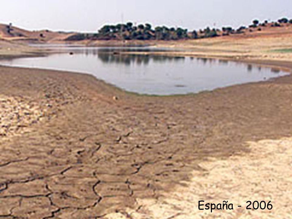 CONSECUENCIAS PARA LOS ANIMALES - Se modifican los ritmos anuales - Cambio en los épocas de polinización - Aparición de plagas - Alteración de las zonas de distribución - Extinción de especies