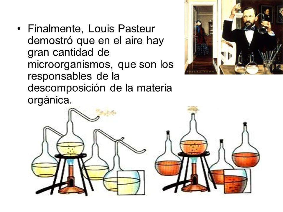 Finalmente, Louis Pasteur demostró que en el aire hay gran cantidad de microorganismos, que son los responsables de la descomposición de la materia or