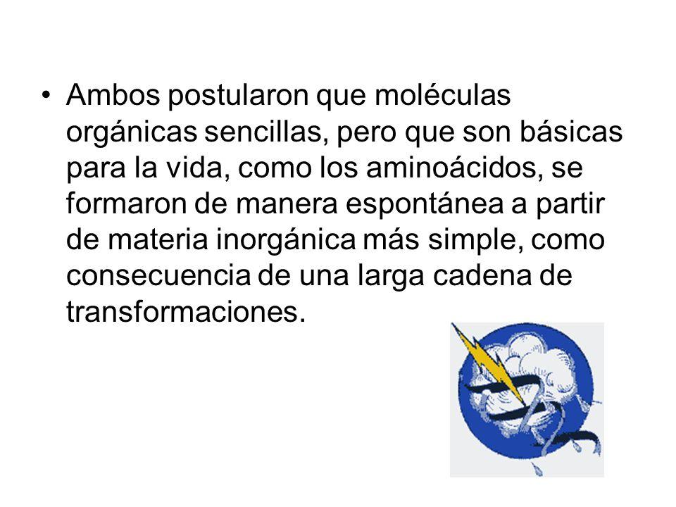 Ambos postularon que moléculas orgánicas sencillas, pero que son básicas para la vida, como los aminoácidos, se formaron de manera espontánea a partir de materia inorgánica más simple, como consecuencia de una larga cadena de transformaciones.
