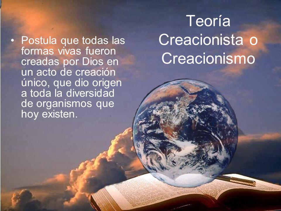 Teoría Creacionista o Creacionismo Postula que todas las formas vivas fueron creadas por Dios en un acto de creación único, que dio origen a toda la diversidad de organismos que hoy existen.
