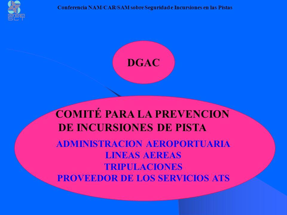 SENEAM Comité Interno para la Prevención de Incursiones de Pista Conferencia NAM/CAR/SAM sobre Seguridad e Incursiones en las Pistas